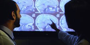 medical students pointing at brain images
